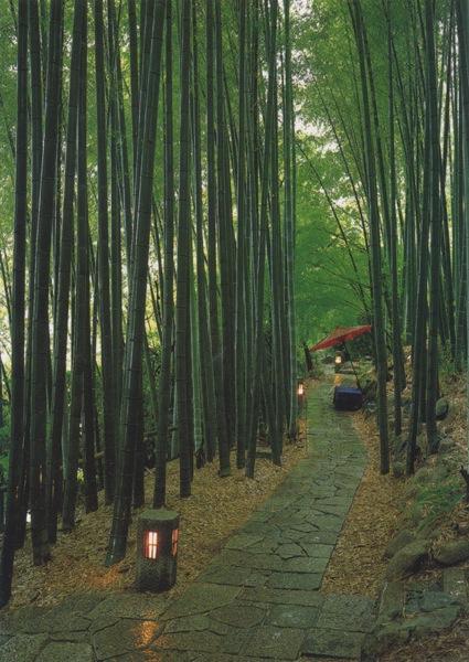 Kyotoasahi