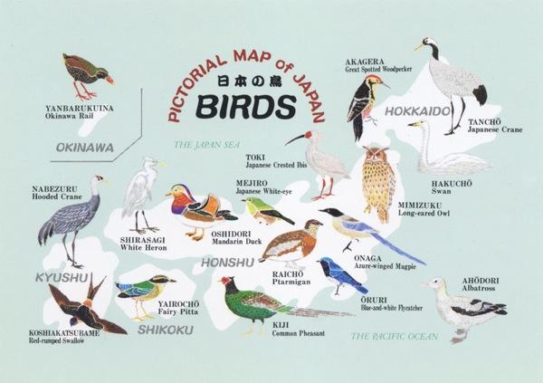 Japan map  Japanese birds