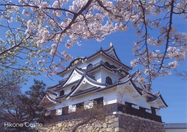 Hikone castle 6